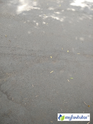 Kumar Sir